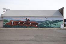 Cow mural